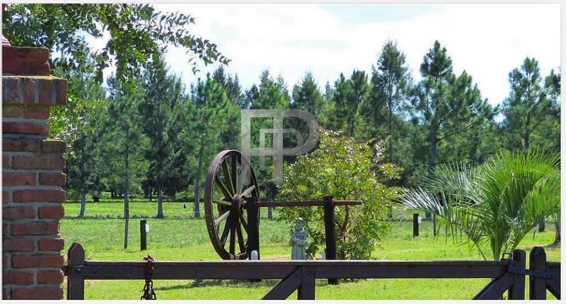 farms for sale Uruguay